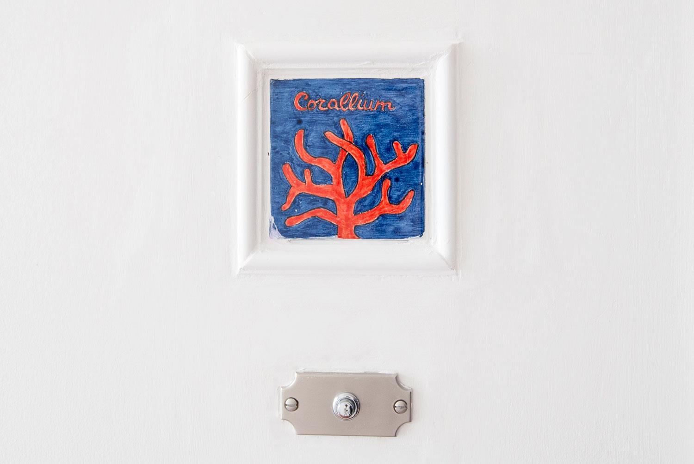 corallium-1